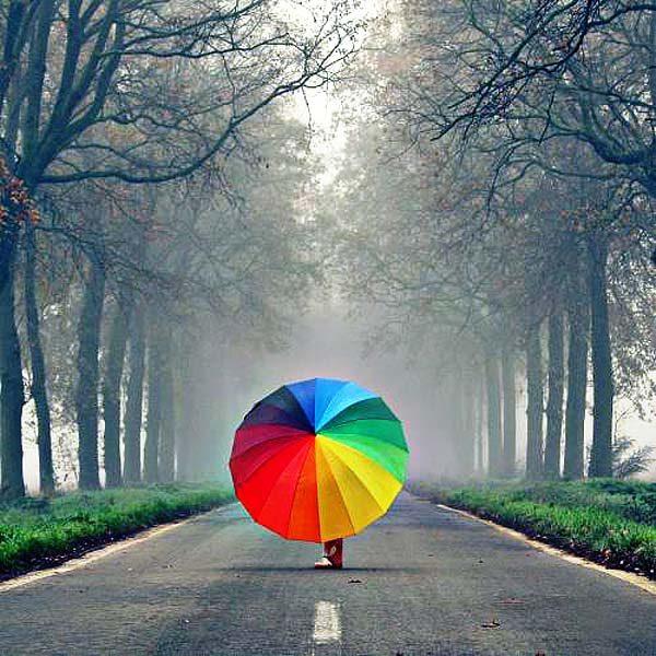 зонт радуга алматы