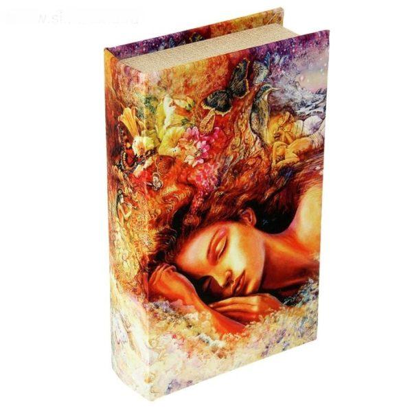 книга сейф в подарок девушке