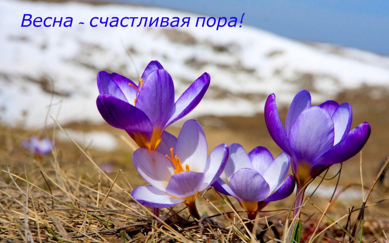 Подарки Алматы