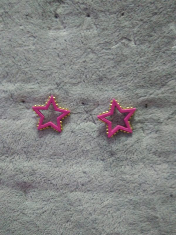 Гвоздики звездочки