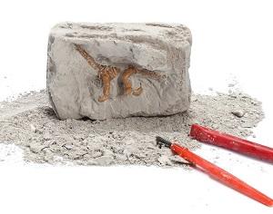 Археологические раскопки для детей